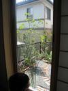 0201_nat_zen_090618_shimizu