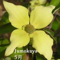 0101_joh_han_080519_s