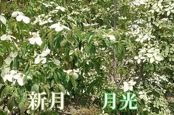0101_jog_1606_02